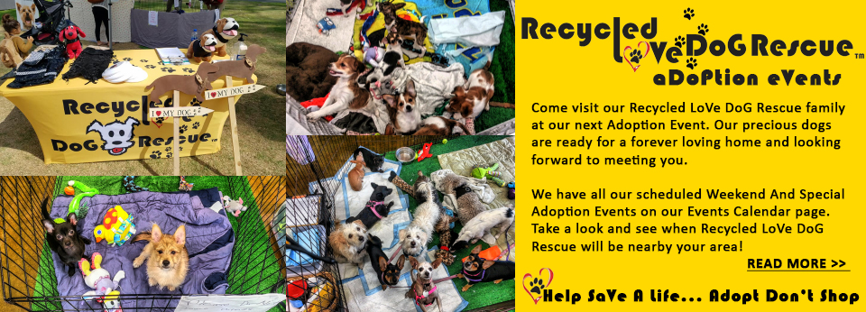 Recycled LoVe DoG Rescue - An All Breed Dog Rescue - Saving
