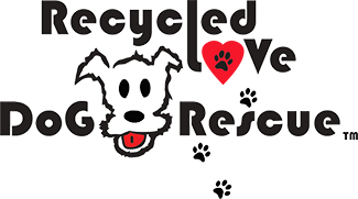 Recycled Love Dog Rescue An All Breed Dog Rescue Saving The Lives Of Dogs In Southern California Including Los Angeles Orange County Inland Empire Riverside And San Diego