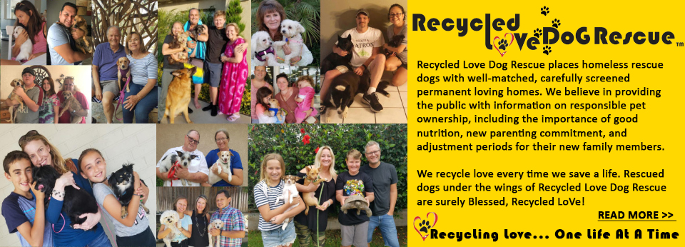 Recycled LoVe DoG Rescue - An All Breed Dog Rescue - Saving The